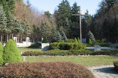 Svidnik and area